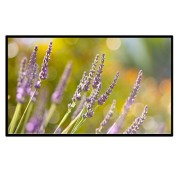 Portable-Outdoor-Movie-Screen-60-Inch-169-Home-Theater-Projector-Screen-PVC-Fabric-Matte-White-0