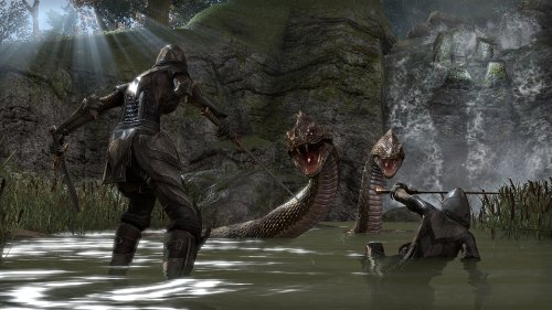 The-Elder-Scrolls-Online-Online-Game-Code-0-7